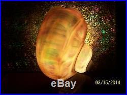 Vintage Art Nouveau Nautilus Sea Shell Table Lamp Nightlight